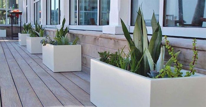 tropical-plant-leasing-plant-containers-jay-scotts-collection-white-cube-planters